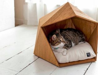 A Fun DIY Project – Building a Simple and Cozy Cat House